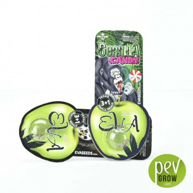 Gorilla Candy 3 semillas Eva Seeds