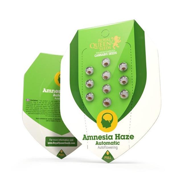Amnesia Haze Automatic - Royal Queen Seeds