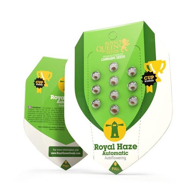 Royal Haze Auto