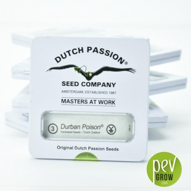 Durban Poison Dutch Passion 1