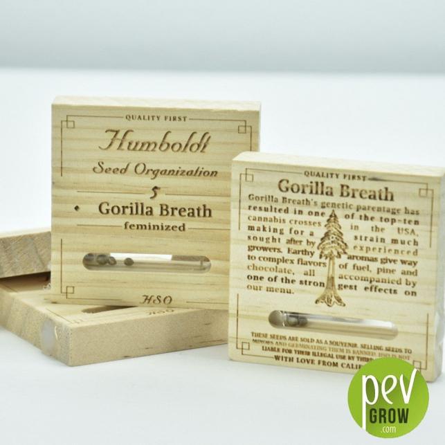 Gorilla Breath - Humboldt Seeds