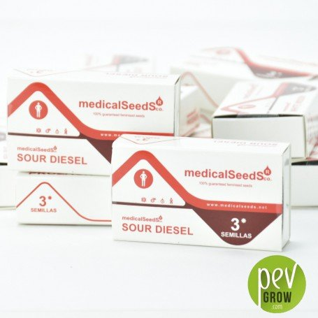 BCN Sour Diesel