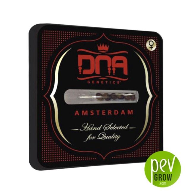 DNA mix pack - DNA Genetics