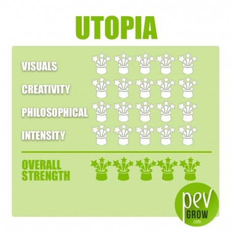 Utopia magic truffles, vacuum protected, superior quality truffles with more potent effects.