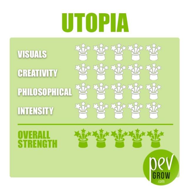Trufas mágicas Utopía, protegida al vacio, trufas de calidad superior con efectos más potentes.