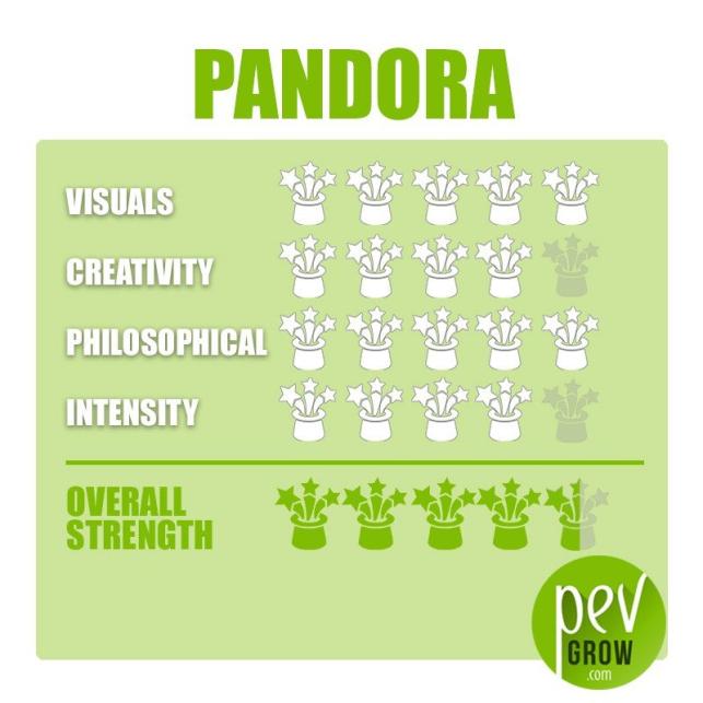 Zaubertrüffel Pandora