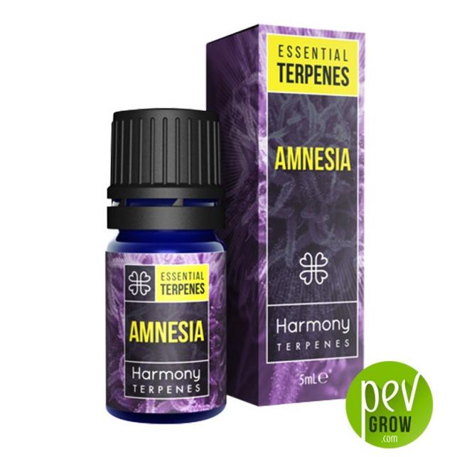 Terpenos Harmony - Amnesia