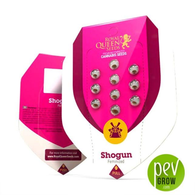 Shogun - Royal Queen Seeds