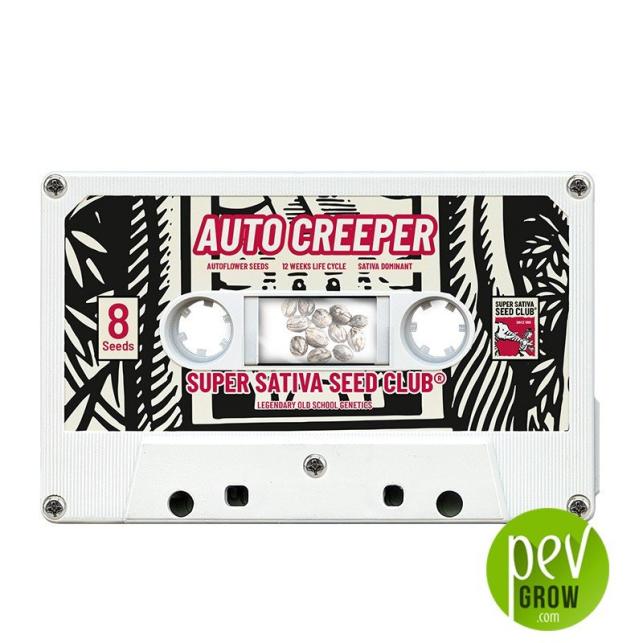 Auto Creeper - Super Sativa Seed Club