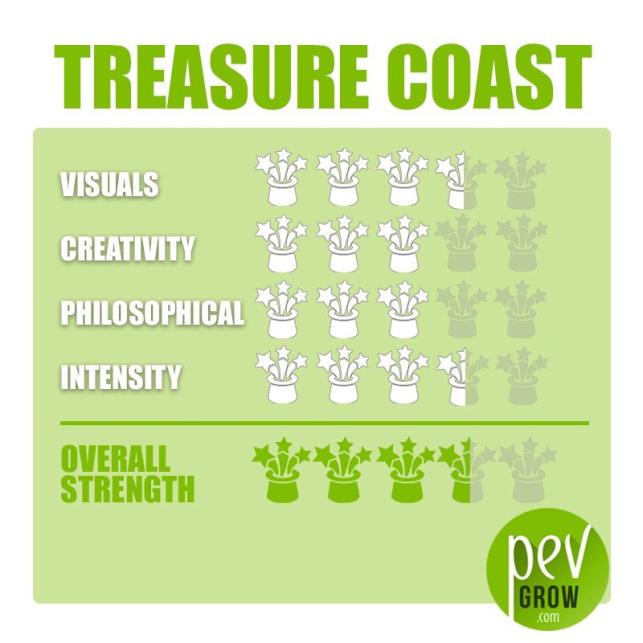 Kit de cultivo de setas Treasure Coast