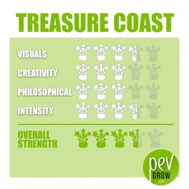 Zuchtset Zauberpilze Treasure Coast