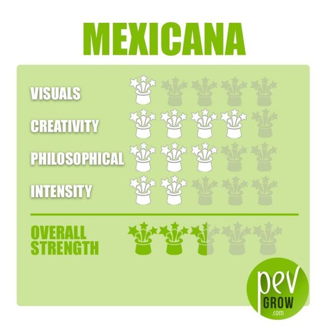 Mexicana Sporen