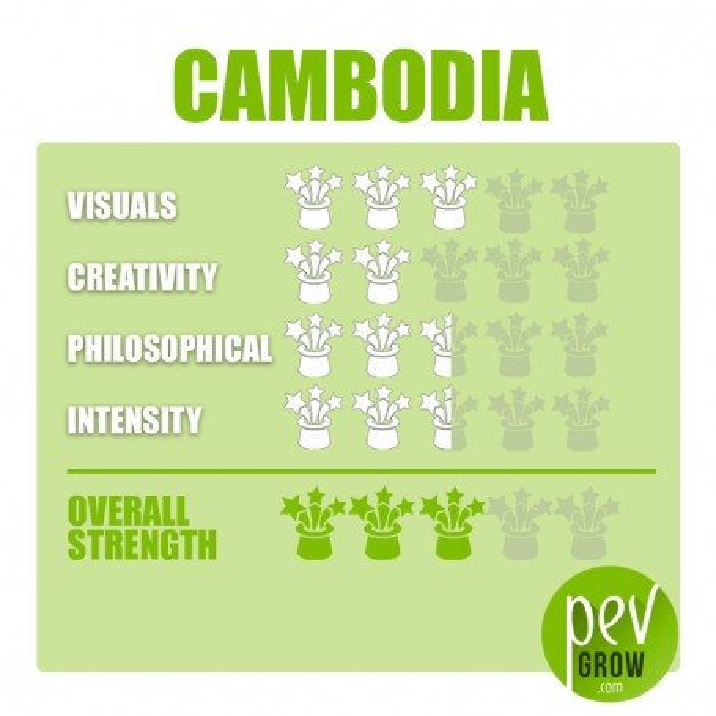 Kit de cultivo de setas Cambodian