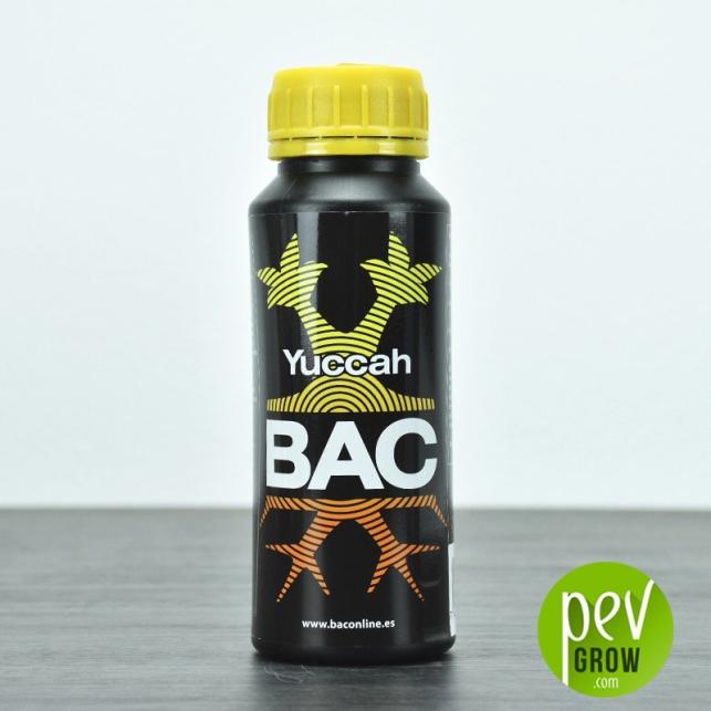 Yuccah - BAC