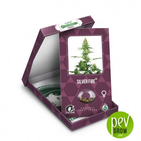 Silver Fire package - Sensi Seeds