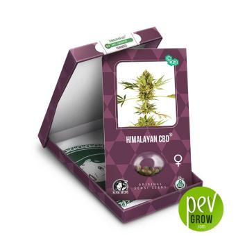 Himalayan CBD envase - Sensi Seeds