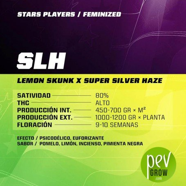 SLH - SBF Seeds