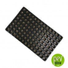 104 Plug Seedling tray