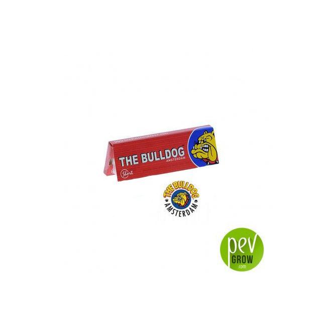 Papier Red Short The Bulldog