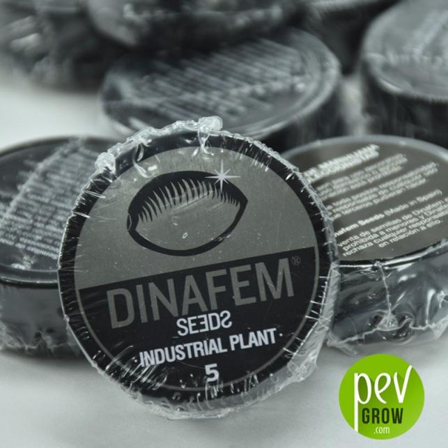Industrial Plant Dinafem Seeds