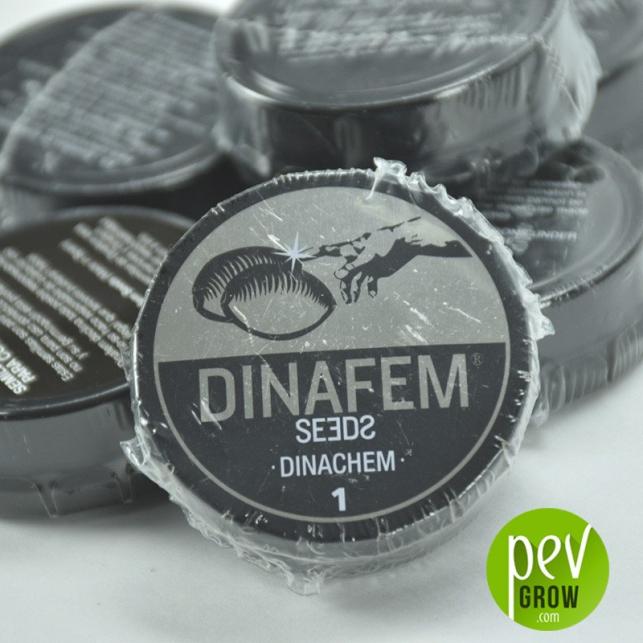 Dinachem 2