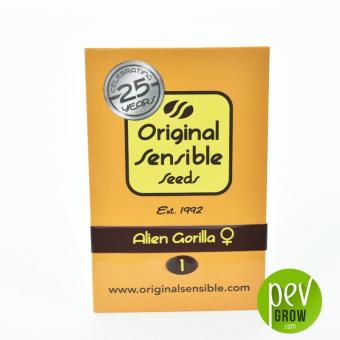 Alien Gorilla Original Sensible Seeds
