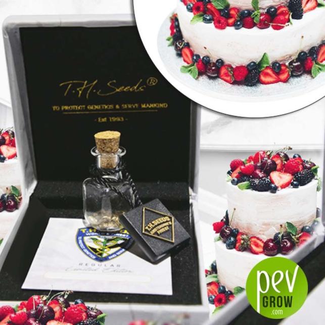 L4YER Cake - TH Seeds