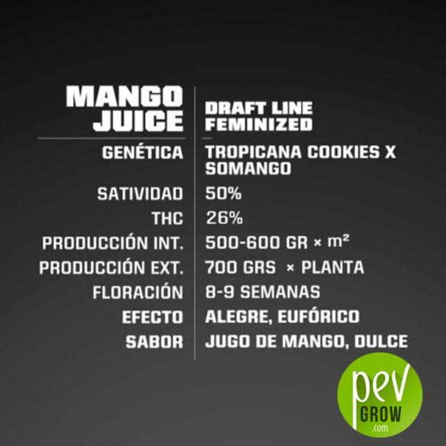 Mango Juice - BSF Seeds