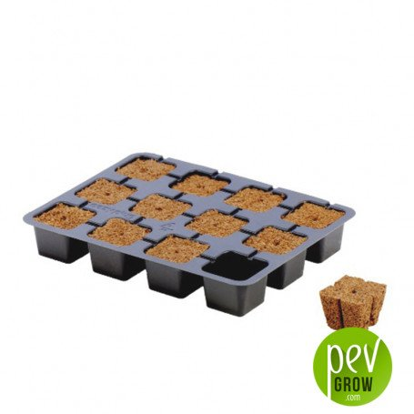 Bandeja Dried Eazy Plugs 12 alveolos