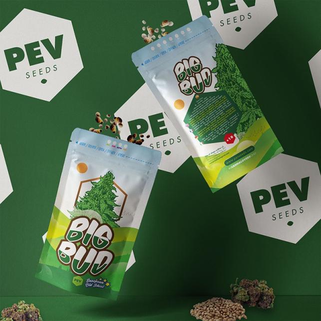 Big Bud - PEV Bank Seeds