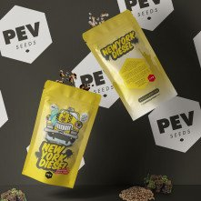 New York Diesel - PEV Bank Seeds