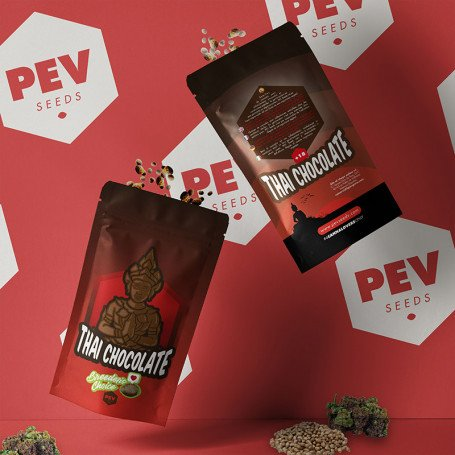 Thay Chocolate 2019 PEV Bank Seeds