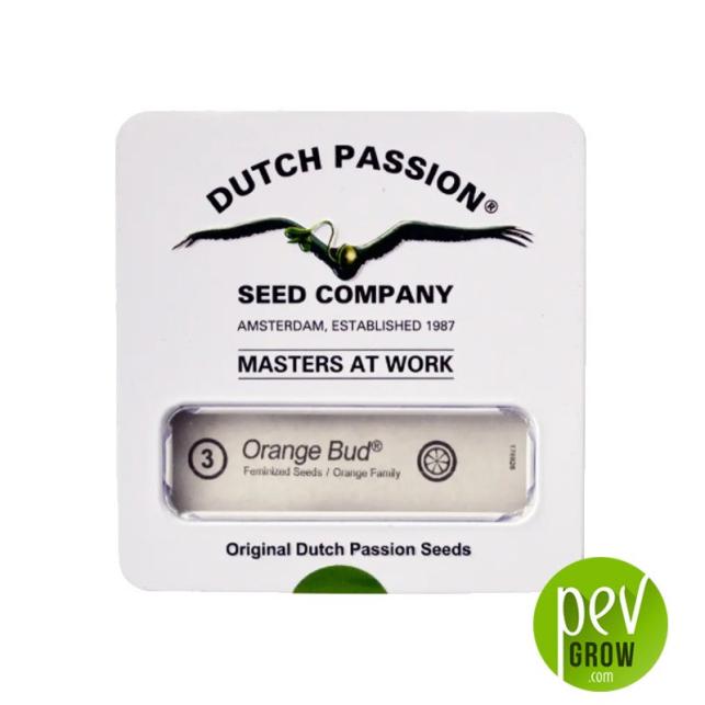 Orange Bud - Dutch Passion