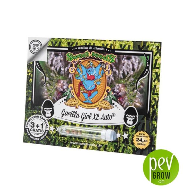 Gorilla Girl XL Auto - Sweet Seeds