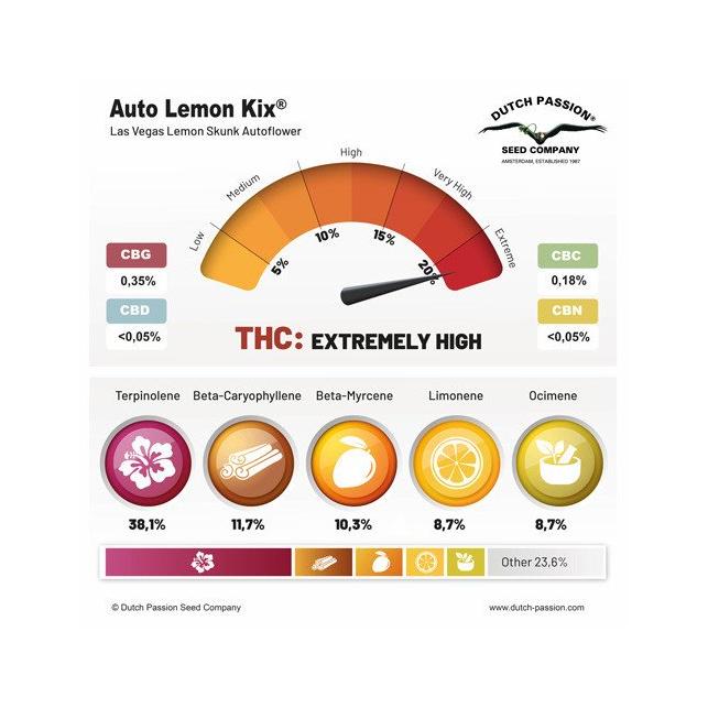 Auto Lemon Kix