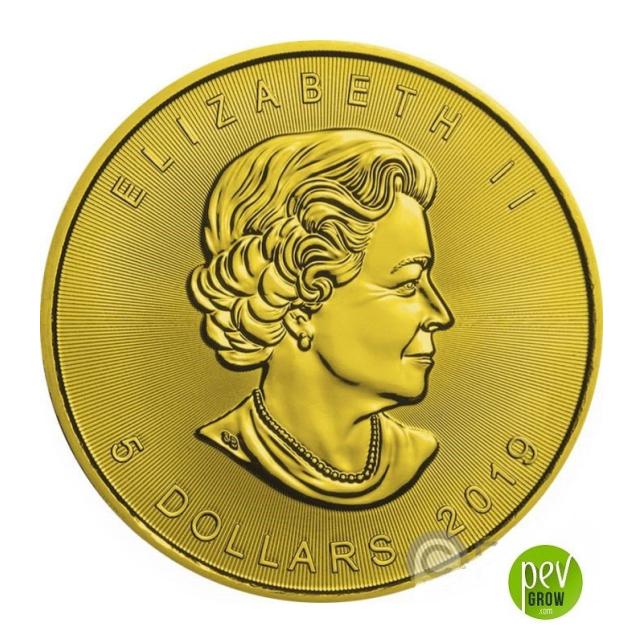 Kanadische 5 Dollar Cannabis-Silbermünze