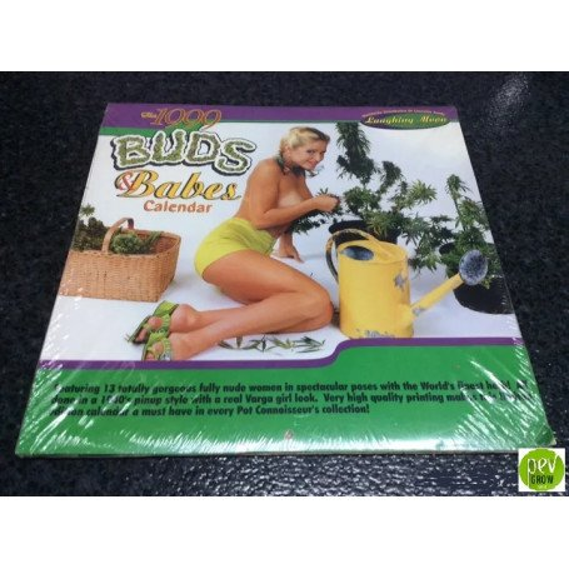 Calendario Buds Babes Calendar de 1999