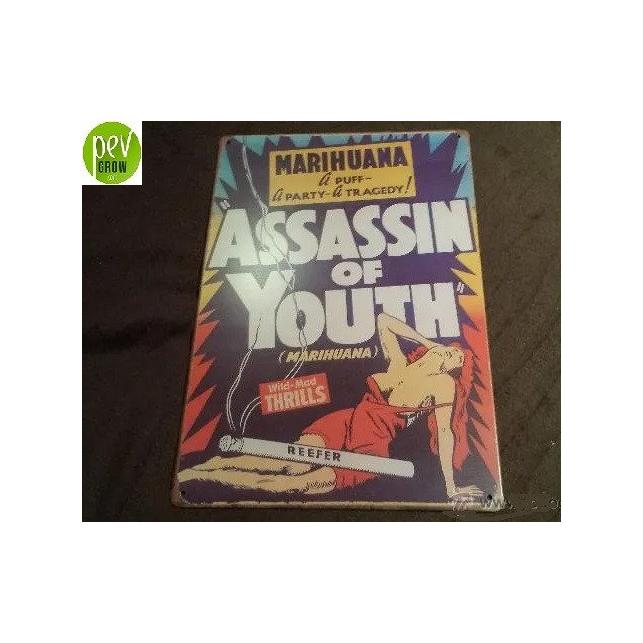 Vintage Film-Blechplakat Marihuana - Assassin of Youth