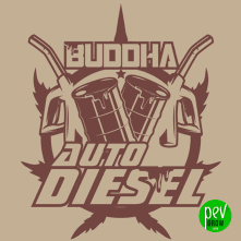 Buddha Auto Diesel