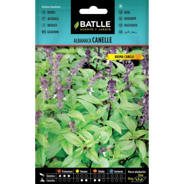 Basilikum Canelle 1,25 g