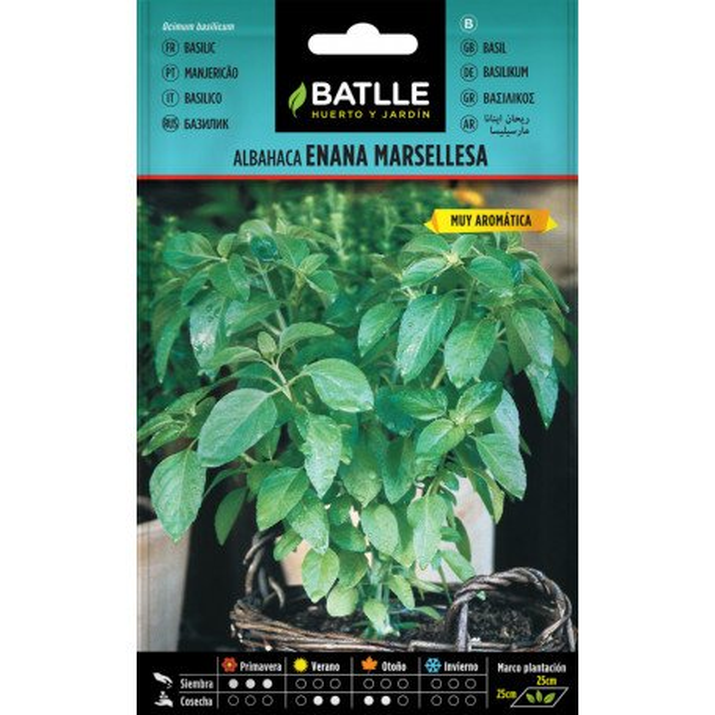 Basilikum Marseillais 0,5 g