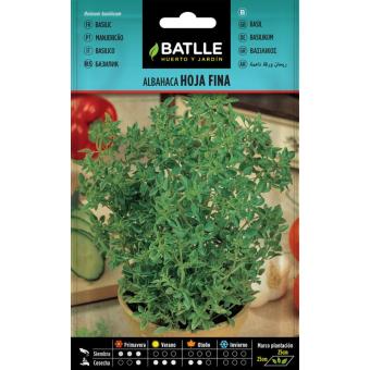 The fine-leaf basil 3gr.