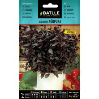 Purple Basil 2gr.