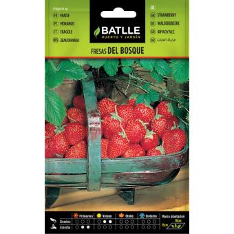 Wald-Erdbeere 0,4 g