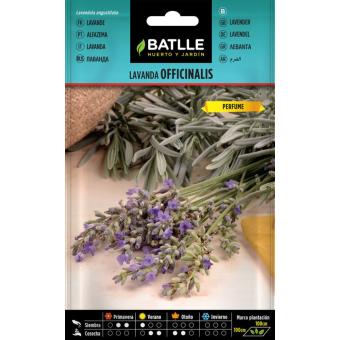 Echter Lavendel 1 g