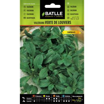 Verte de Louviers Valerian seeds 6gr.