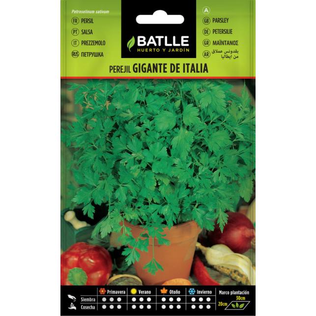 Perejil Gigante de Italia 15gr.