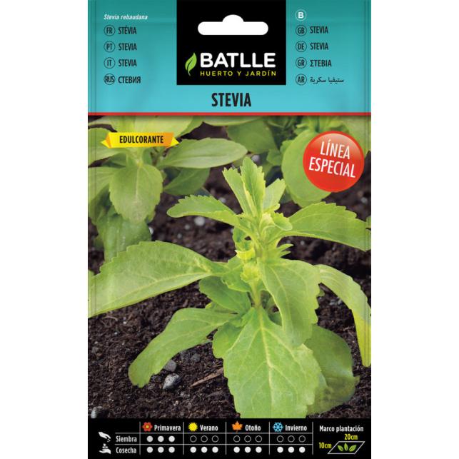 Stevia 35 Samen