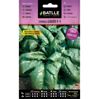 Spinat-Samen 10 gr.