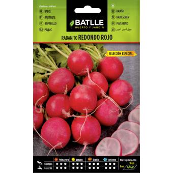 Graines de Radis rouge précoce 1,5 gr.